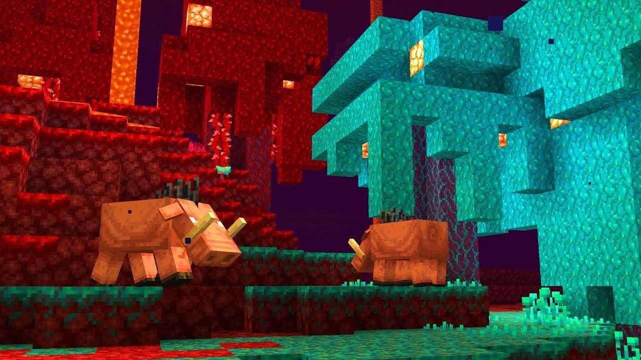 Minecraft Nether Area