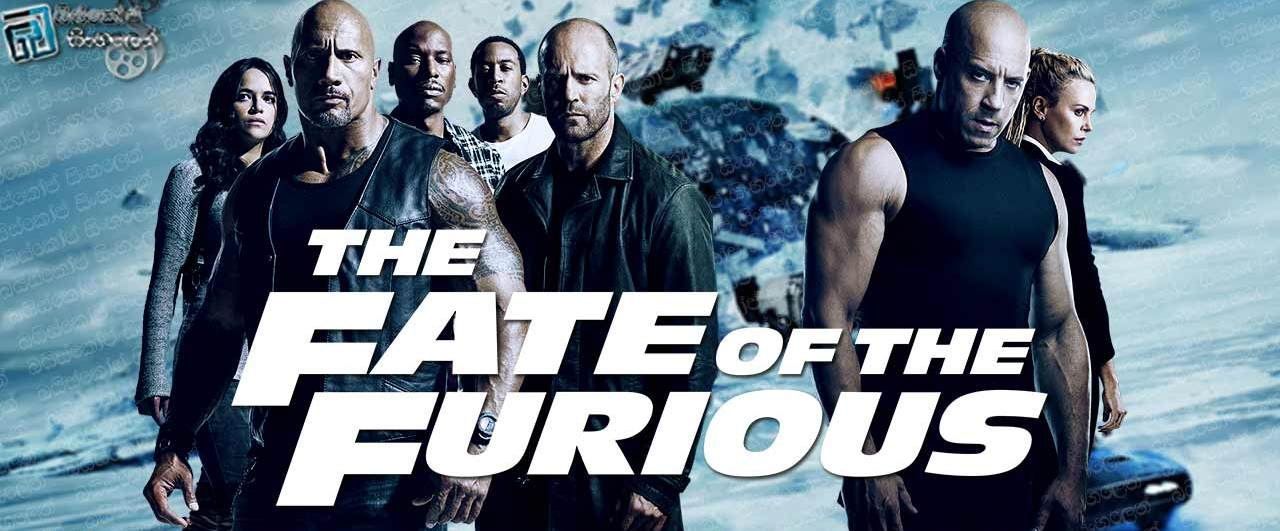 Top 15 Movies Of Dwayne Johnson You Must Watch!