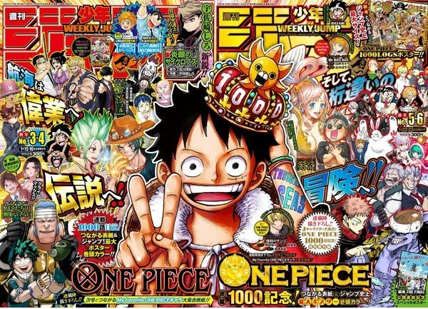 One Piece Double Spread Cover