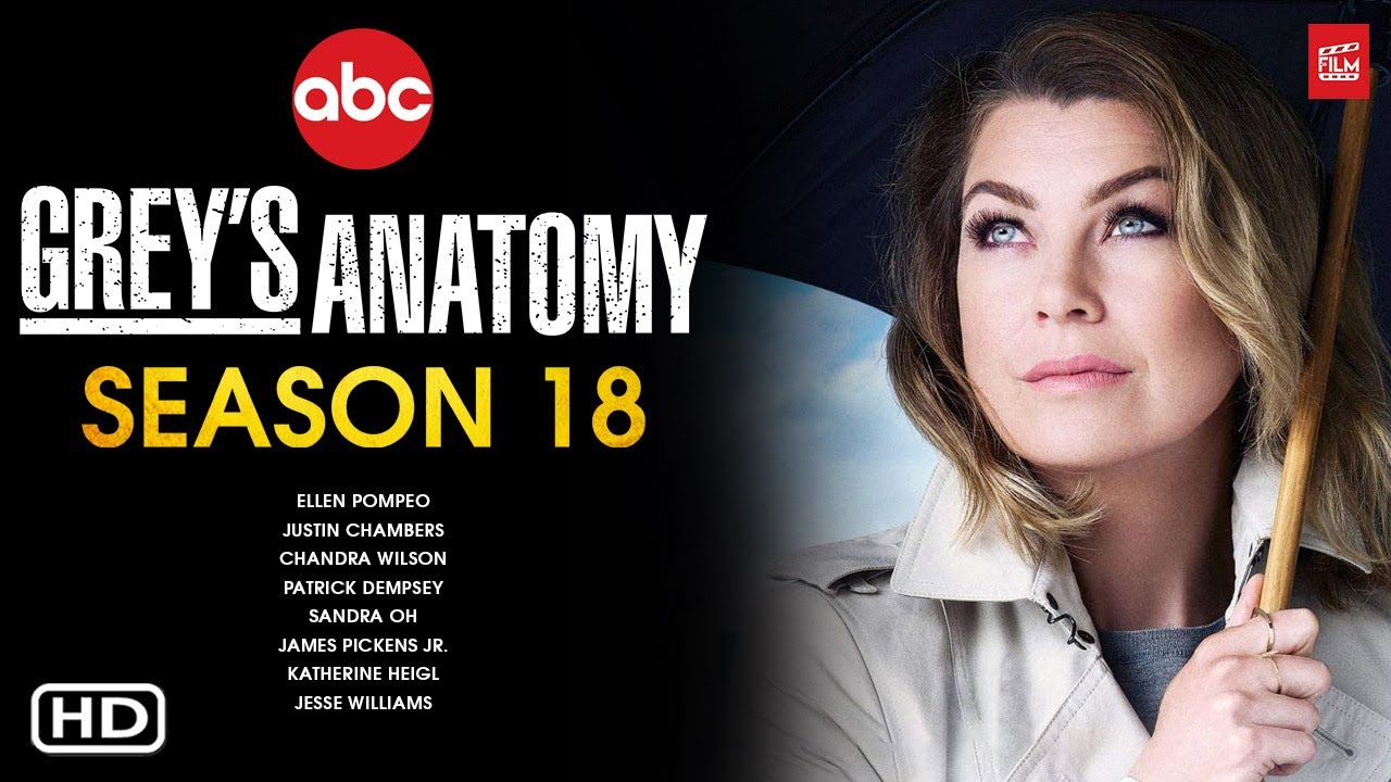 Preview, Cast And Renewal Status: Grey's Anatomy Season 18
