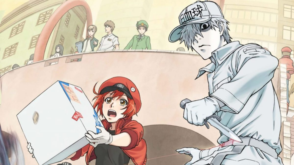 Cells at Work anime similar to Dr. Stone