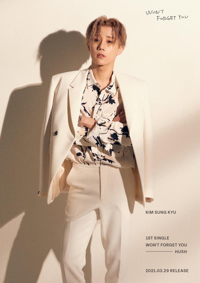 Kim Sungkyu (INFINITE) Reveals 1st Album'Won't Forget You' Concept Photos.