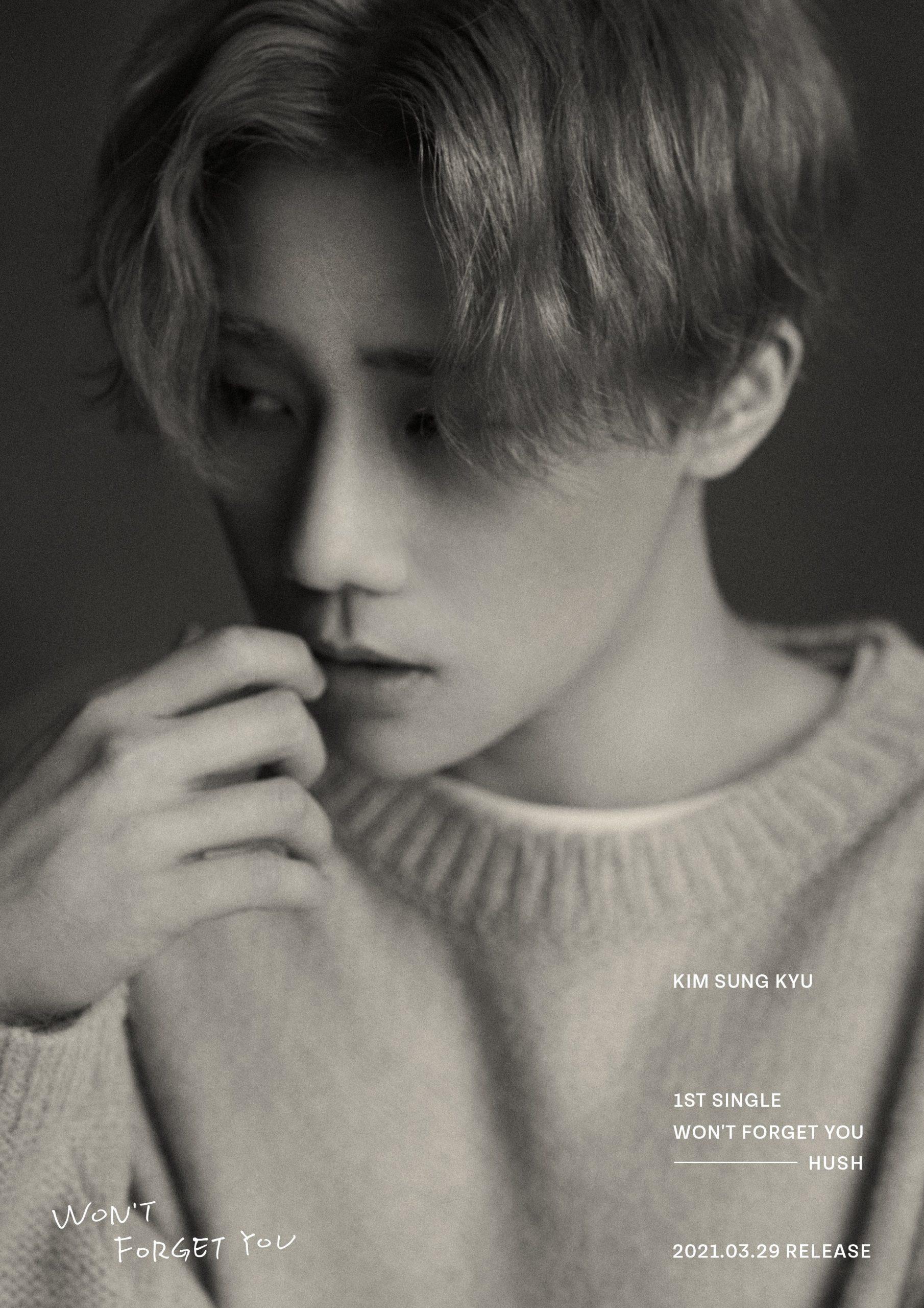 Kim Sungkyu (INFINITE) Reveals 1st Album 'Won't Forget You' Concept Photos.