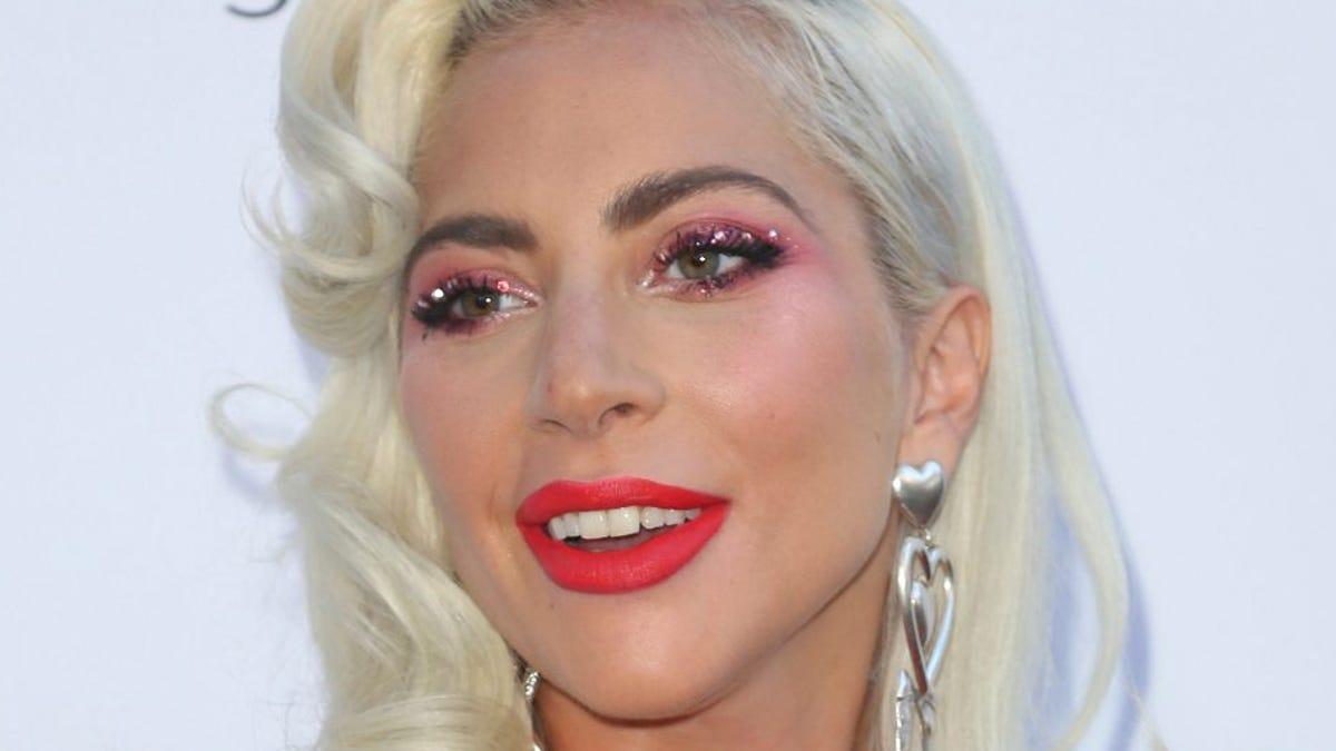 Lady Gaga Dogs Rescued