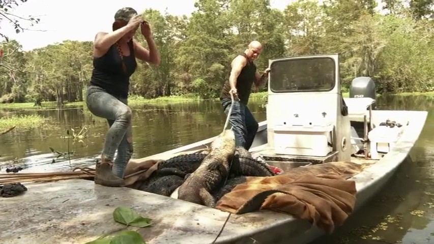 Spoilers And Preview: Swamp People Season 12, Episode 6