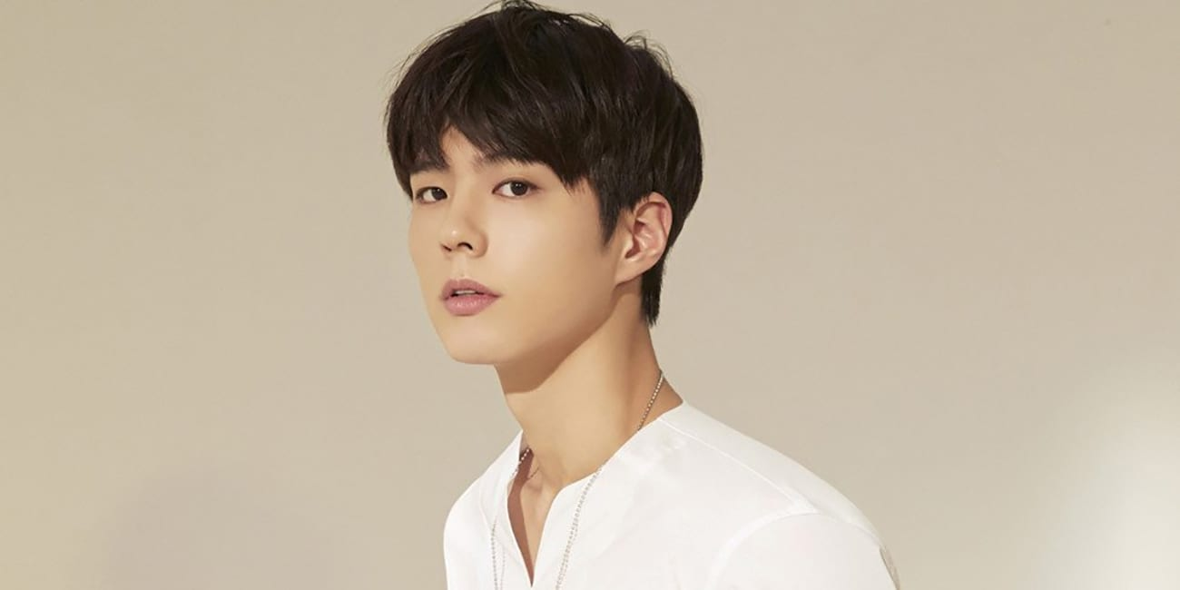 Who Is Park Bo Gum?