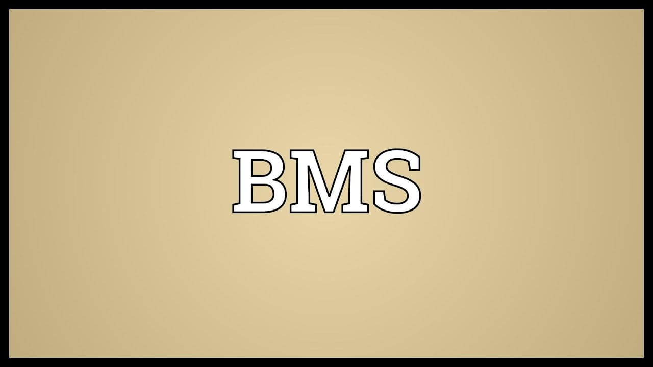 What is BMS on TikTok?