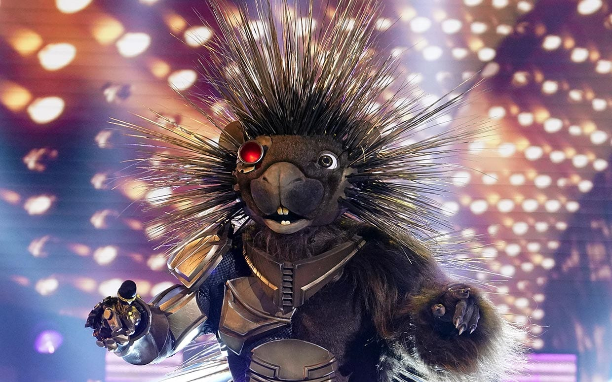 Who is Robopine on The Masked Singer season 5