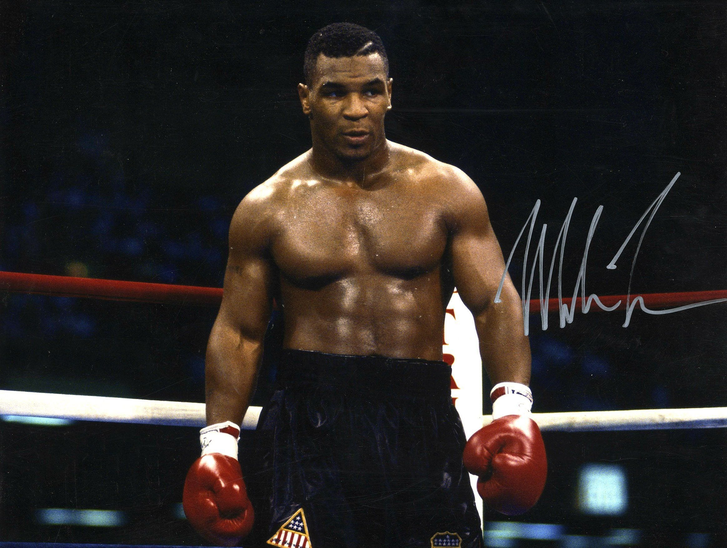 Mike Tyson Net Worth 2021- From The Most Fearful Boxer To Bankrupt