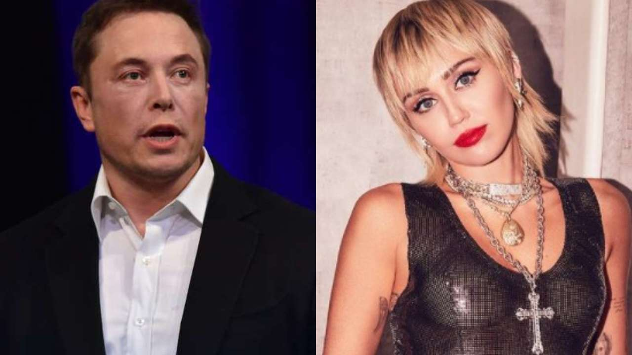 Elon Musk Floki Meaning.
