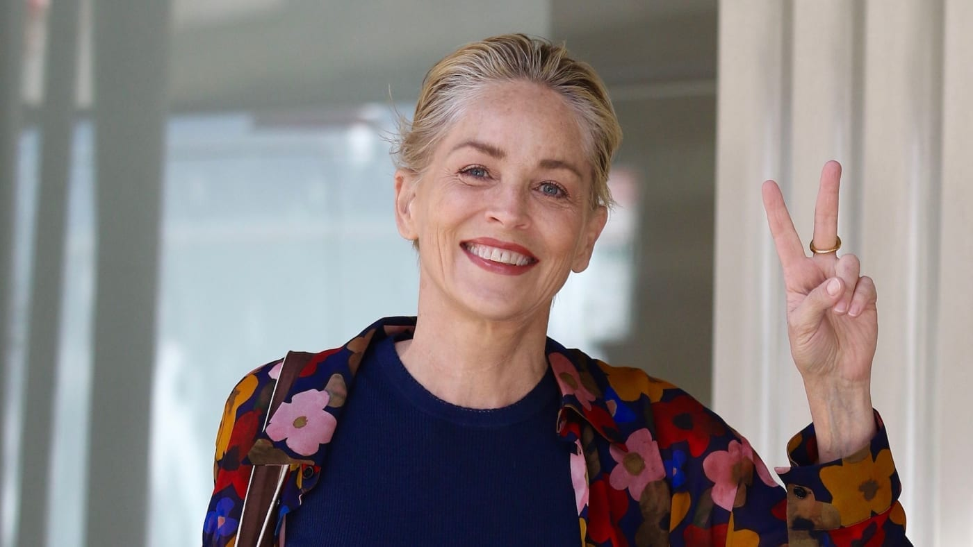 Who Is Sharon Stone Dating Now