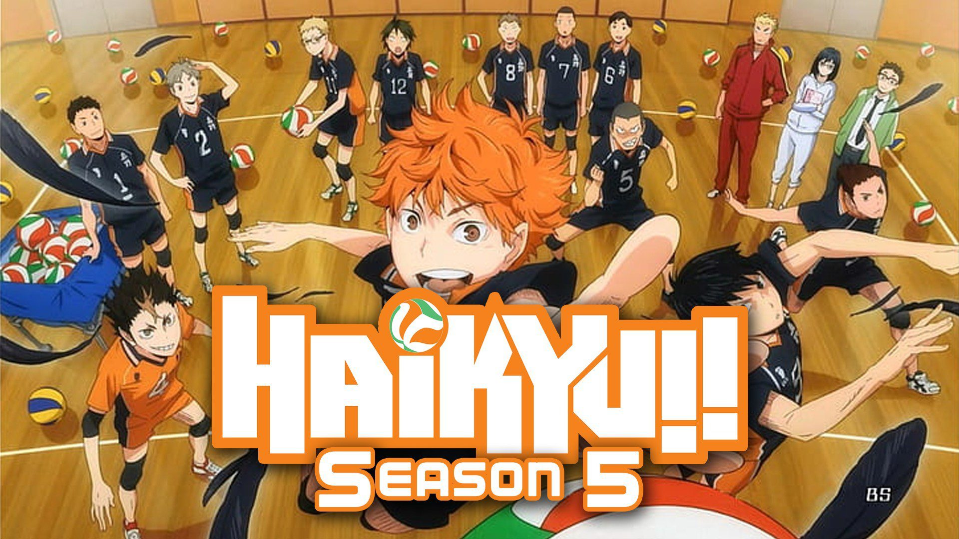 Haikyuu Season 5 Dub Release Date