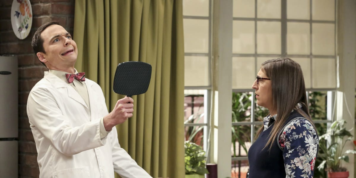 Sheldon and Amy Breakup