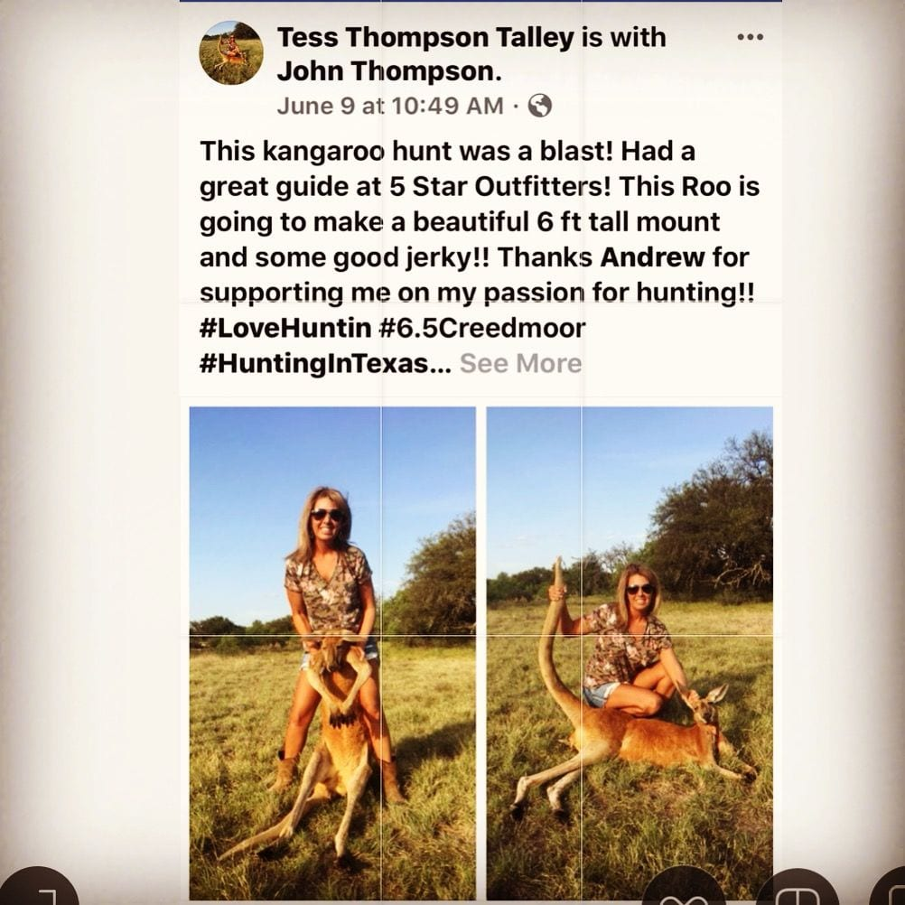 More about Tess Thompson
