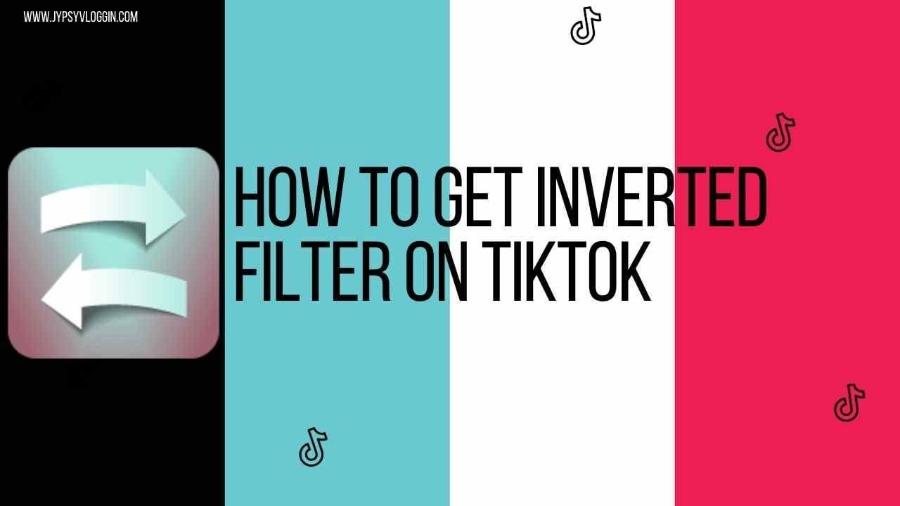 What is Tiktok Symmetry Filter?