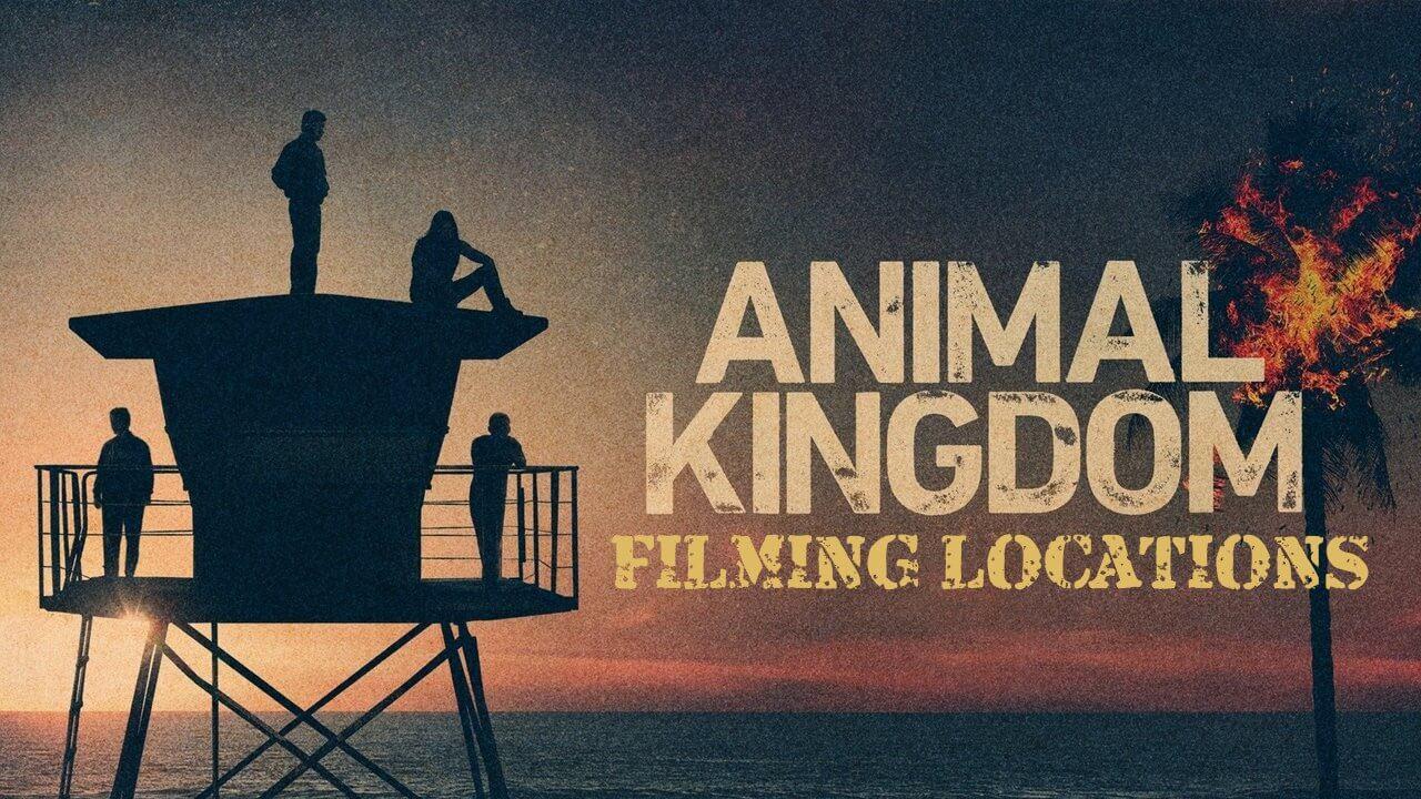 Animal Kingdom Season 6 release date
