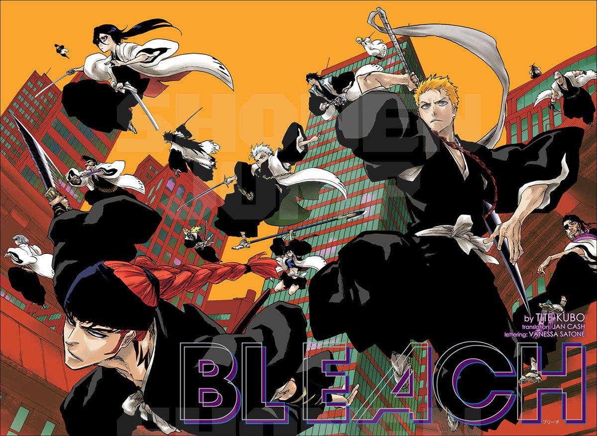 Bleach one-shoy
