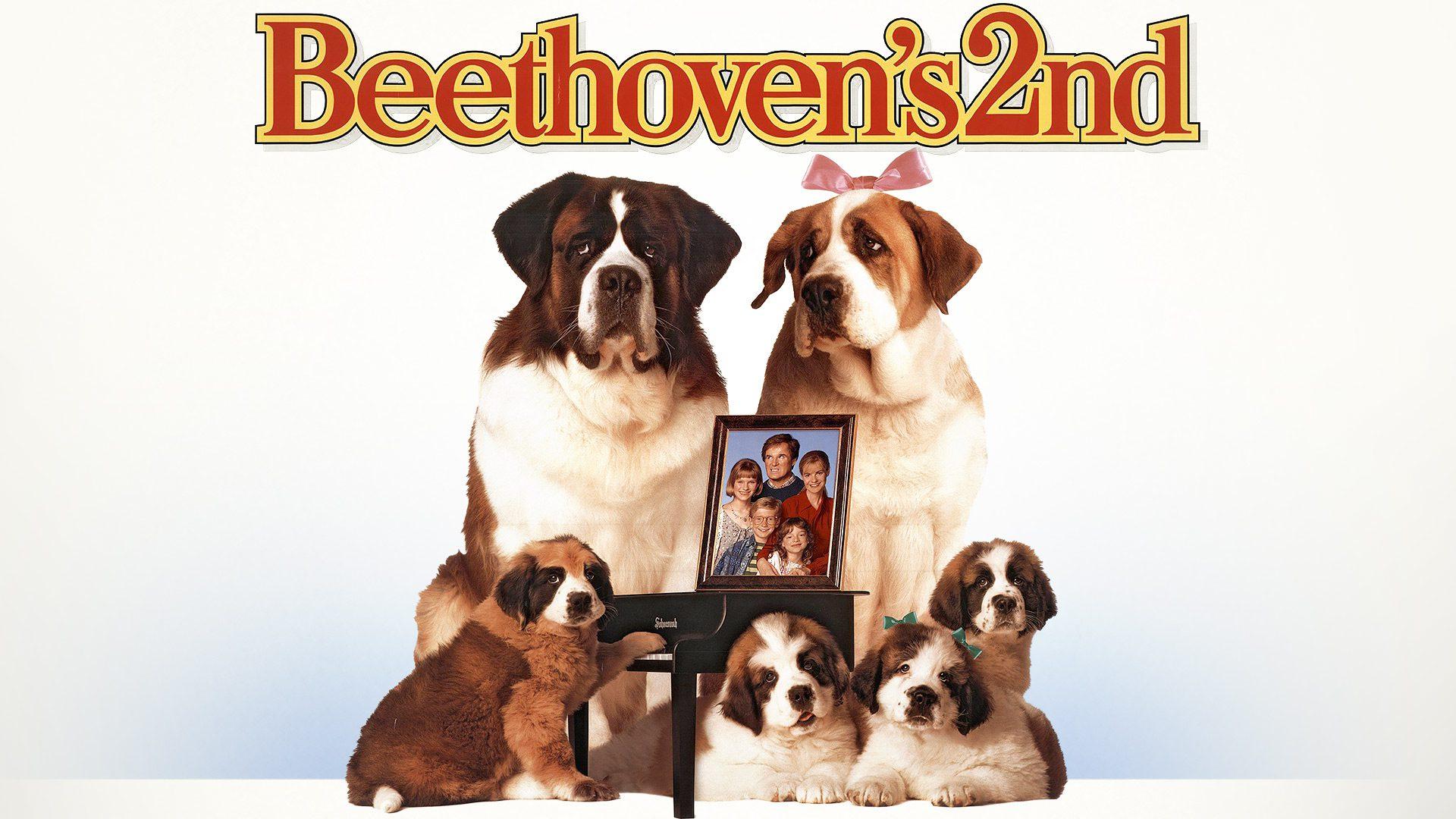 where was beethoven 2 filmed
