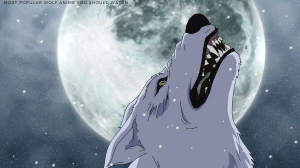 Wolf Anime