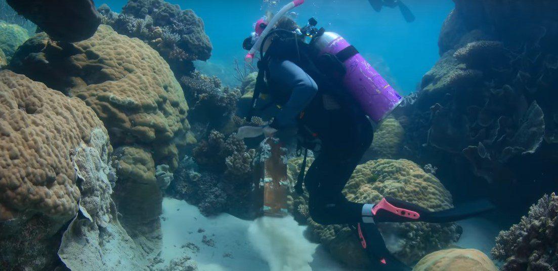 Dive Club Season 2 Release Date