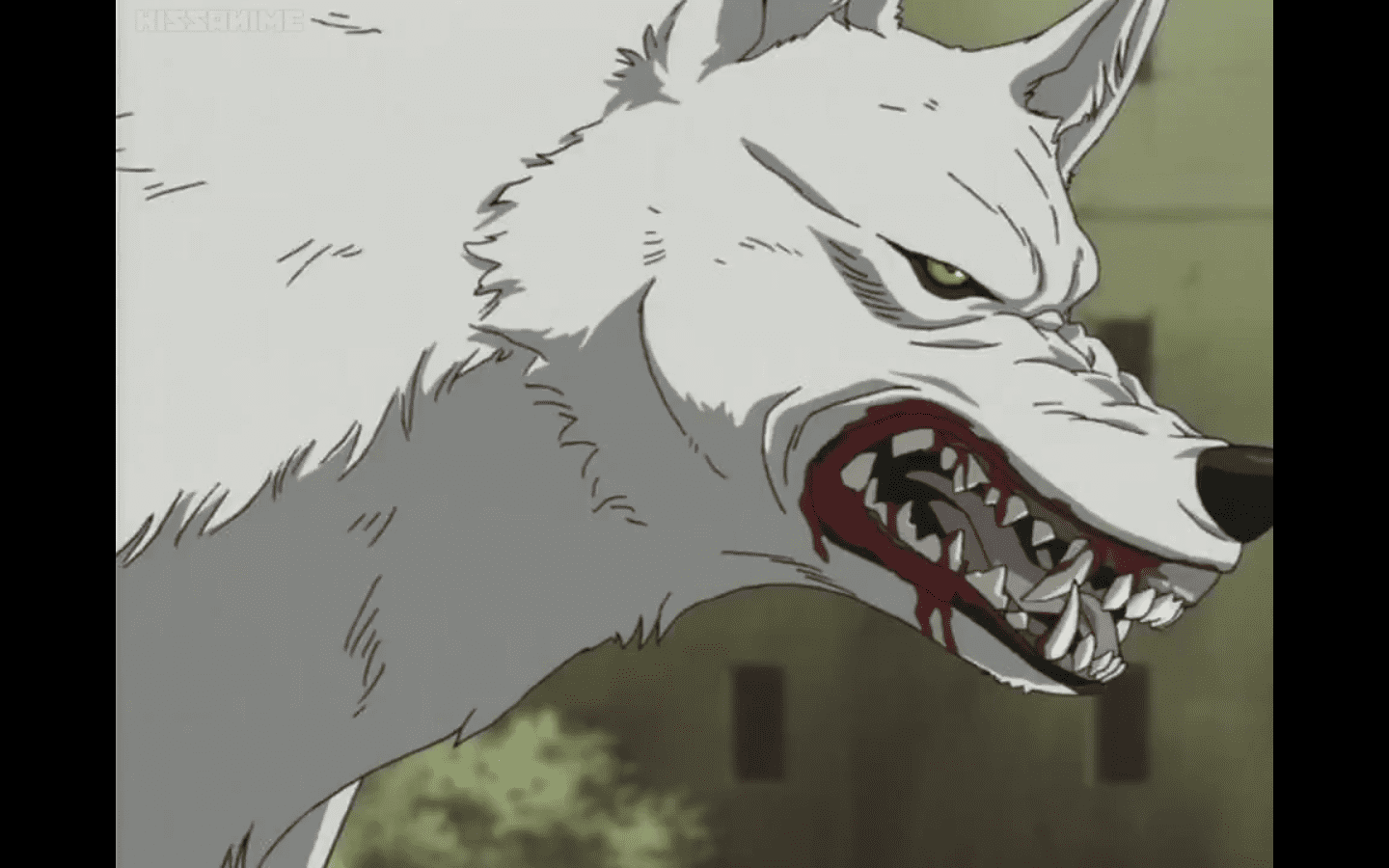 Most Popular Wolf Anime You Should Watch