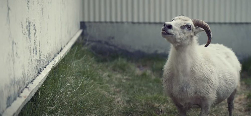 Lamb Movie 2021 Ending Explained