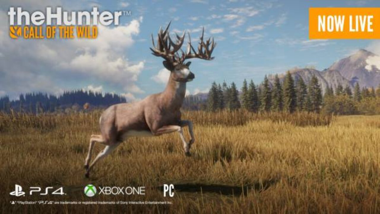 the hunter call of the wild patch notes