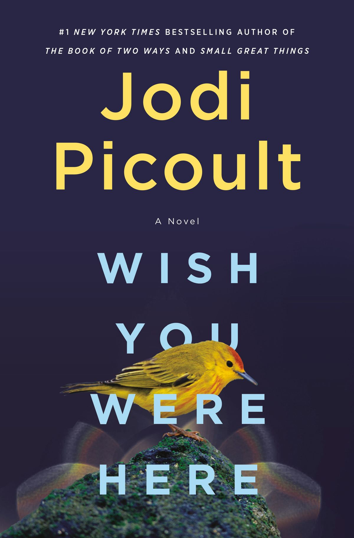 Wish You Were Here by Jodi Picoult novel Release Date
